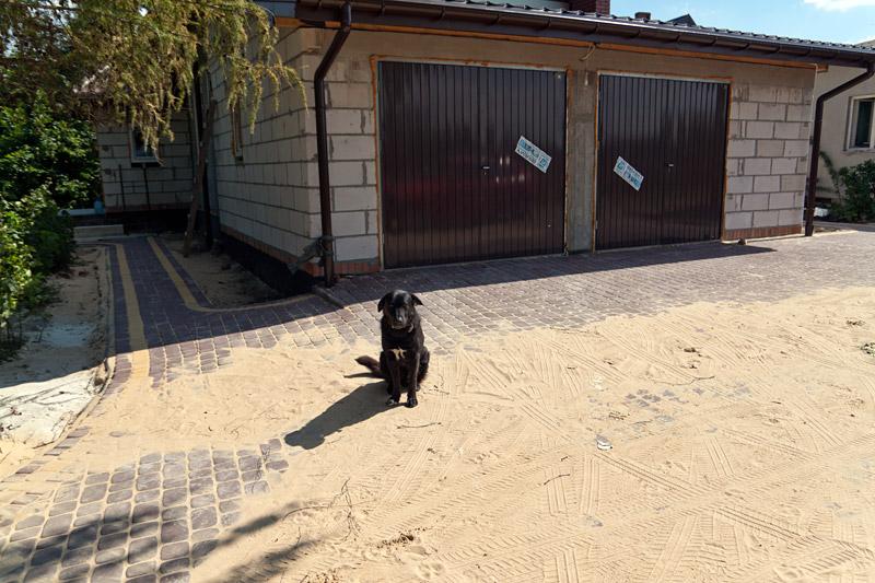 Kostka brukowa - wysypany piasek